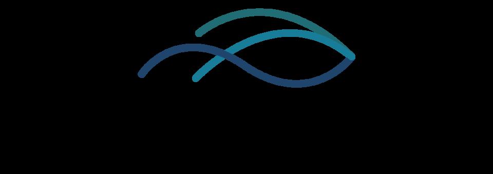 2020 – Ny logo